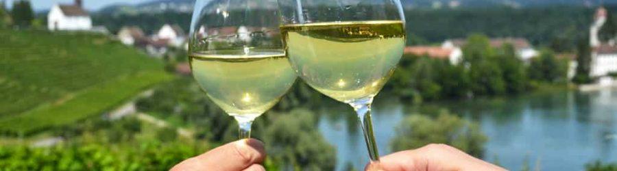 Weinwanderung als idealer Betriebsausflug für Jung und Alt.