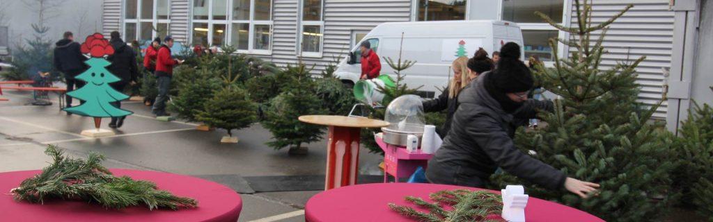 Weihnachtsfeier Idee Tannenbaum schlagen b-ceed events