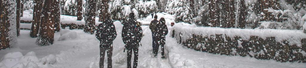 Schneeschuhwanderung und Guide bei der Glühweinwanderung zur Weihnachtsfeier mit dem Team | b-ceed: events
