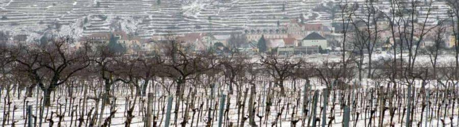 Die Glühwein-Wanderung durch die schönsten Regionen Deutschlands im Winter