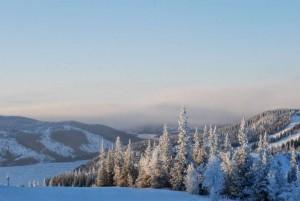 Entdecken Sie die schönsten Winterlandschaften auf Ihrer Glühwein-Wanderung durch Deutschland