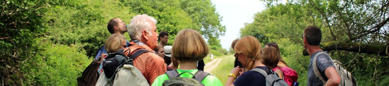 Wanderlust mit dem Team in der Eifel mit b-ceed: events!
