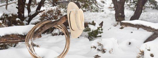 Motto Ideen für die nächste Weihnachtsfeier mit Wild West Thema b-ceed