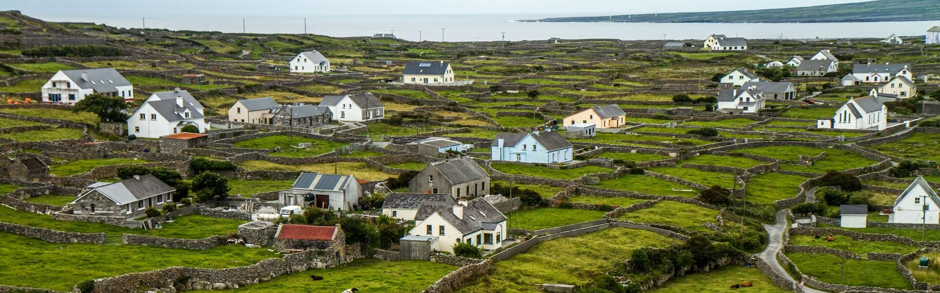 Firmenreise durch die grünen Landschaften Irlands