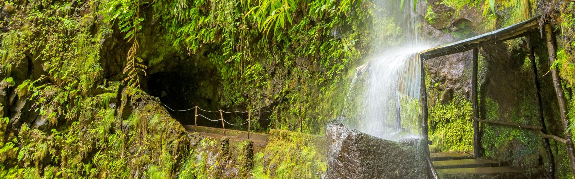 Wasserfall und Levadas auf Madeira - tropische Kulisse bei der Incentive Reise von b-ceed