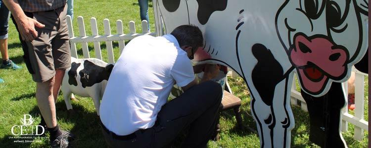 Bauernolympiade mit Wettmelken auf den schönsten Bauernhöfen in NRW als Team Event