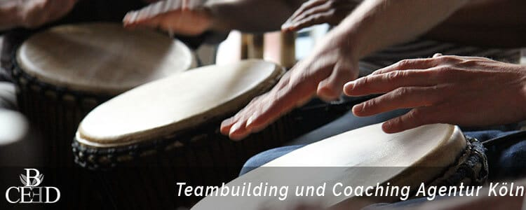 Teambuilding und Coaching in Koeln mit b-ceed: events