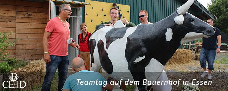 Teambuilding Essen: Teamtag auf dem Bauernhof im Ruhrgebiet mit der Eventagentur b-ceed