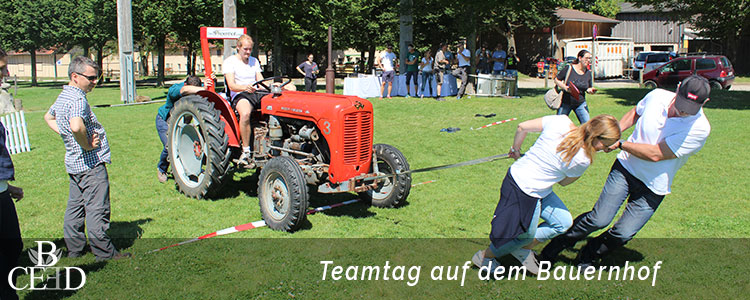 Teambuilding in Stuttgart auf dem Bauernhof -b-ceed