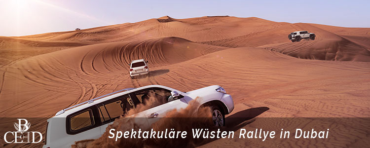 Zu den beliebtesten Destinationen für die Incentive Reise gehört Dubai. Eine Wüsten Rallye mit Jeeps durch die Wüste mit b-ceed