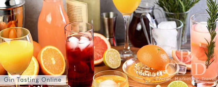 Gin Tasting Virtuell - Teamevent und Seminar mit Cocktails und Longdrinks - bceed
