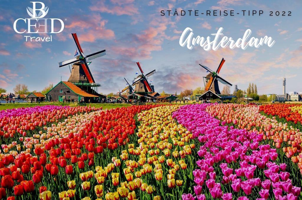 Amsterdam - Reise Tipp fuer Staedte Trips 2022 - bceed Travel Reiseagentur