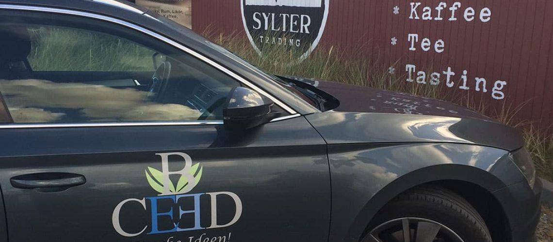 firmenreise nach sylt - events mit b-ceed für unvergessliche stunden - sylt erleben